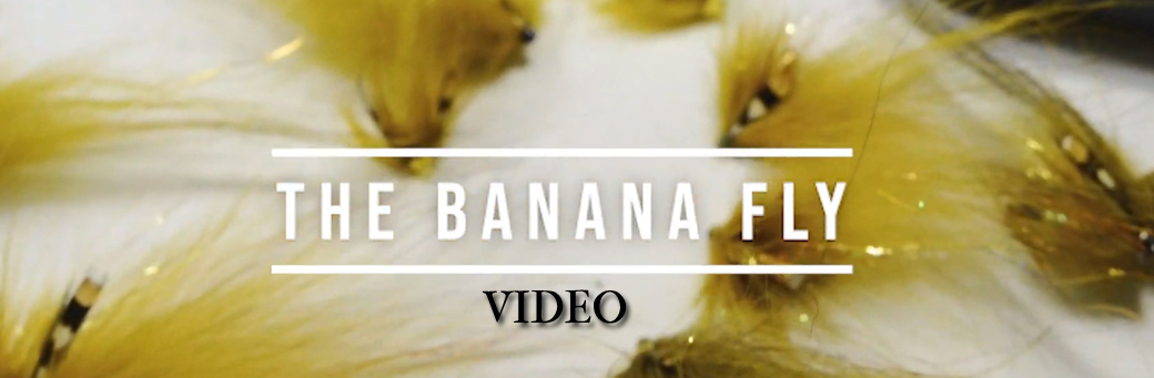 Banana Fly Video By Micke Andersson