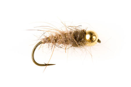 Bead Head SL Pupa - Grey