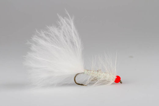 White Leech - Red Bead
