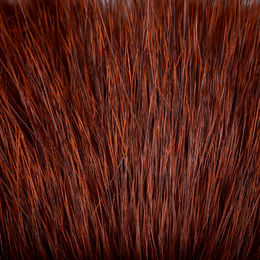 Grizzle Fiery Brown